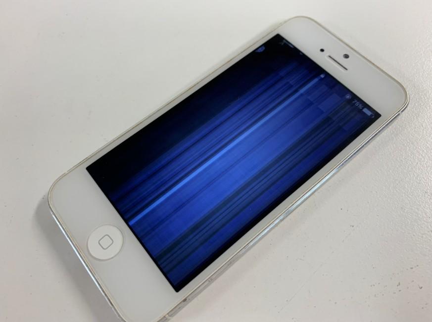 液晶画面が真っ青で操作出来ないiPhone5
