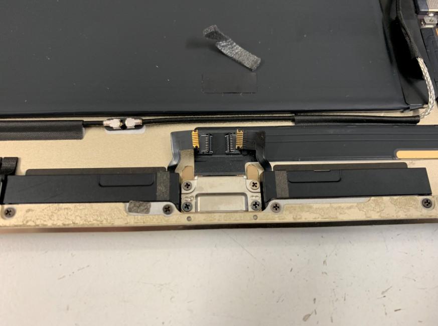 ドックコネクターのネジを隠したシールを剥がしたiPad Air2